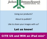 CITE and WIN!